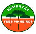 Sementes 3 Pinheiros